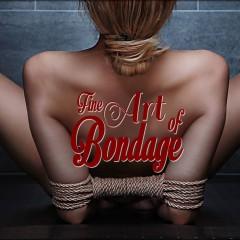 Bondage Fine Art Fotografie – Models gesucht