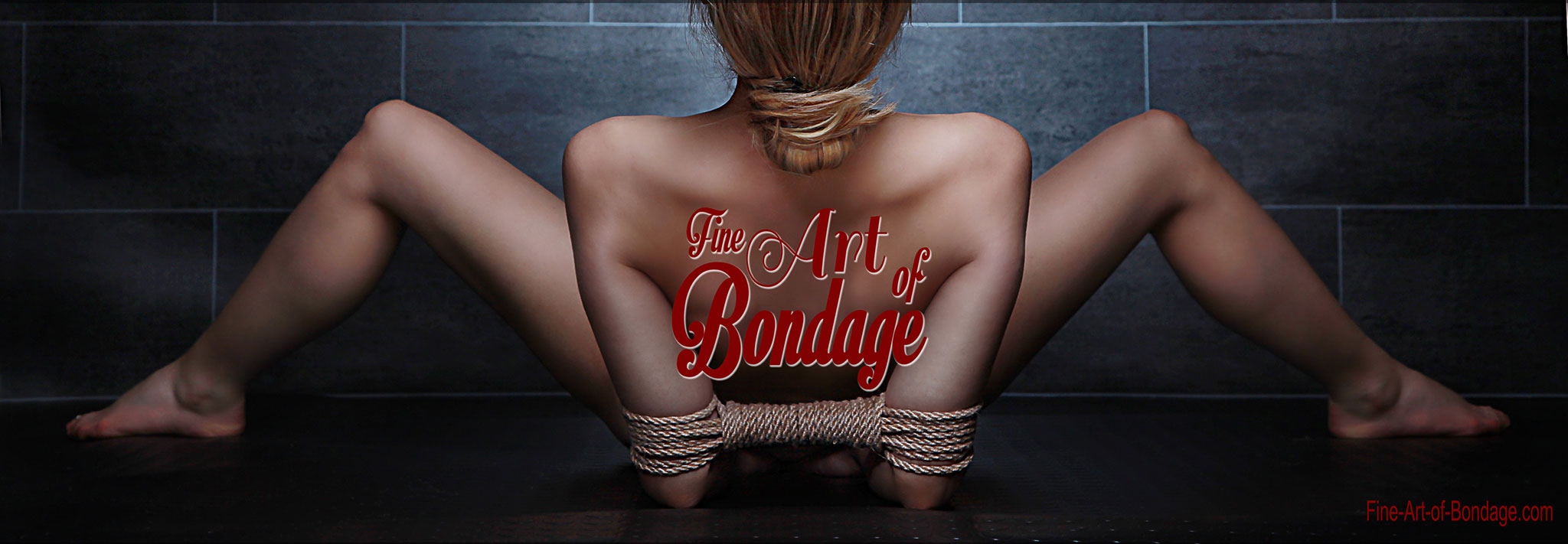 Fine Art of Bondage