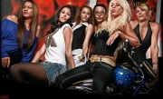 6 Girls auf Harley Davidson